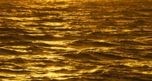 Gold-WATER