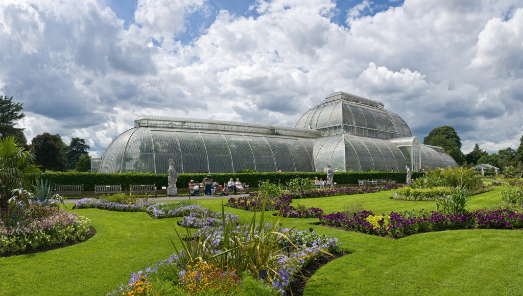 London's giant glasshouse to reopen with world's rarest plants