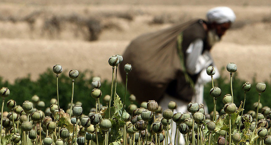 Taliban drug labs