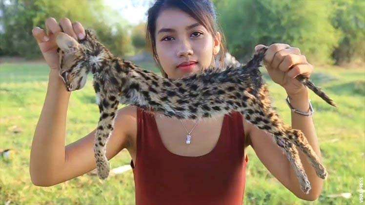 WOMAN ARRESTED AFTER COOKING ENDANGERED ANIMALS TO MAKE MONEY ON